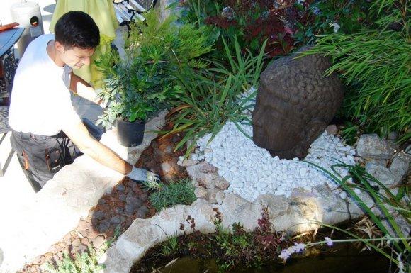 Le charme de belles plantations dans un jardin Rives