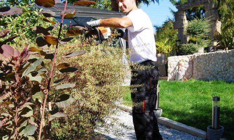 Petit jardinage Rives