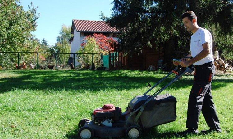 Tonte de pelouse Rives